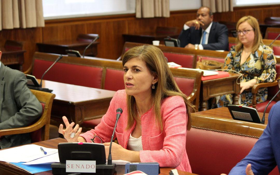 El Senado pide al Gobierno una Estrategia para el Turismo Accesible
