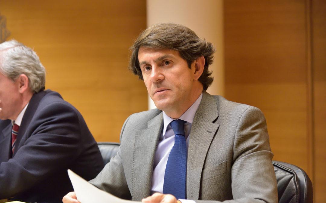 """Navarro: """"Los afectados por la xylella se sienten olvidados por la consellera Cebrián"""""""