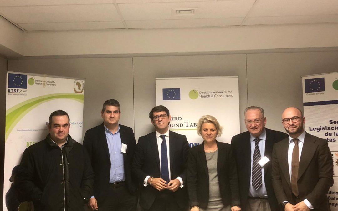 El PPCV reivindica en Bruselas ayudas contra la xylella ante la pasividad del Consell