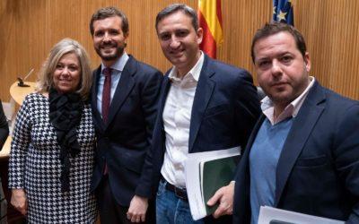El PP de Alicante refuerza su presencia en el Grupo Popular del Congreso