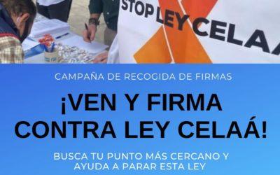 Movilización del PP de la Provincia de Alicante para recoger firmas contra la Ley Celaá